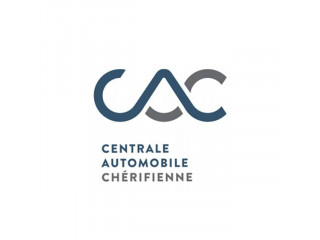 Consultant Fonctionnel IT